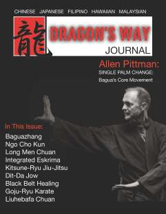 Dragon Way 1 Cover
