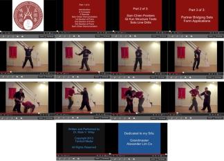 NGK DLP 1 Capture Collage